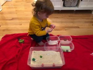 sensory bin sorting activity