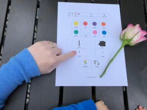 Flower adjective worksheet speech therapy
