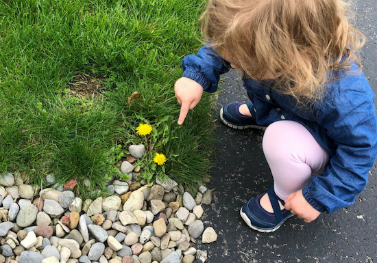 spring scavenger hunt for toddler or special educatoni