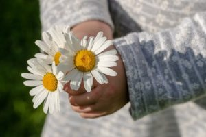 summer flower activities for language learning